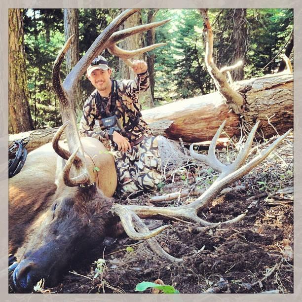 Tj's Elk